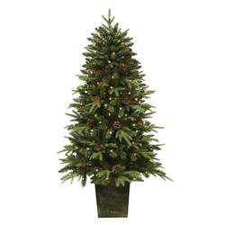 potted pre lit tree trim a home 174 5 pre lit potted silver oak pine tree