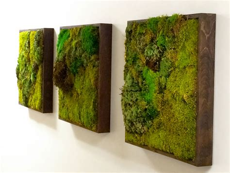 green wall decor moss walls the newest trend in biophilic interiors