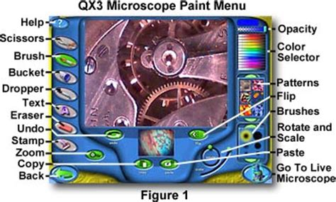 molecular expressions science optics and you intel play qx3 computer microscope