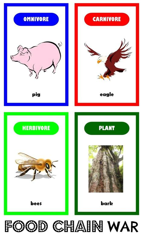 food webs on pinterest food chains science and food awesome get worksheets on food chains 5th science