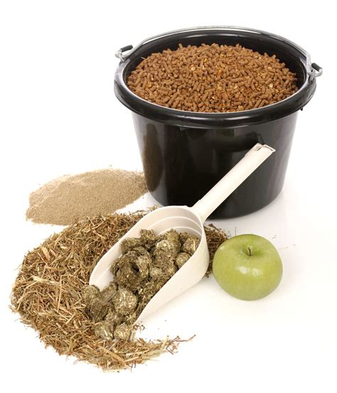 Horse feed photos grains and concentrates gallery