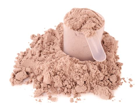 supplement powder the best protein powder for building revealed