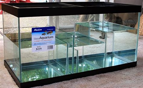 aquarium refuge design 97 best filter images on pinterest aquarium sump fish