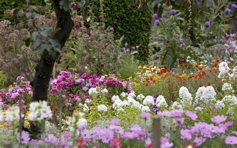 Image Of Flower Garden Beautiful Flowers Page 7