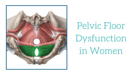 pelvic floor dysfunction in oahu spine rehab