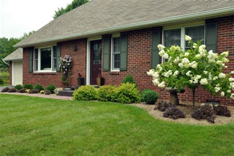Simple Landscape Ideas Simple Front Yard Landscaping Ideas Pictures Galleryhip