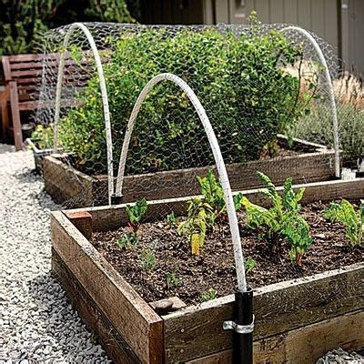 Raised Beds By Acerg C 1 Gardening Plant It Up Pinterest Vegetable Garden Covers