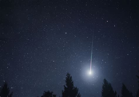 Leonid Meteor Showers by Leonid Meteor Shower Gallery