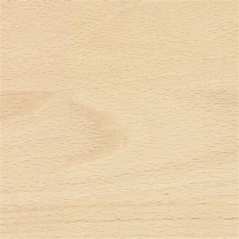 beech wood light wood texture seamless 04300
