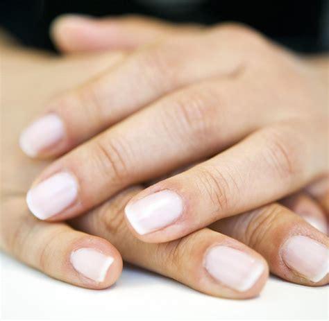 Fingern Gel Schwarz Wei 4488 by Fingern 228 Gel Wei 223 Wei Lackierte Fingern Gel Fingern Gel