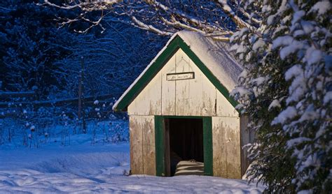 how to keep your dog house warm in the winter diy cold weather dog house keep your dog warm in winter top dog tips