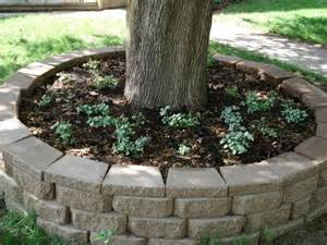 tree planter 17 best ideas about tree planters on mid