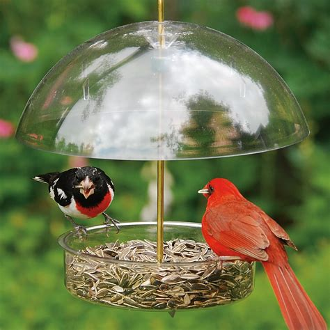 droll yankee seed saver covered dish bird feeder model x 1