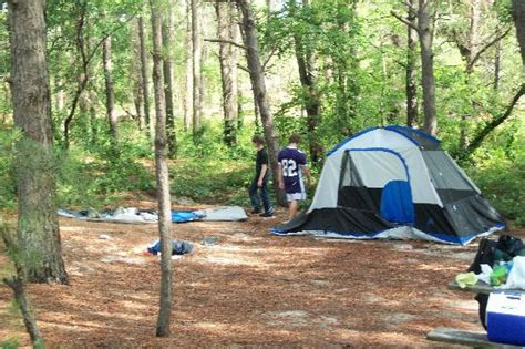 our tent at the site picture of cape henlopen state park