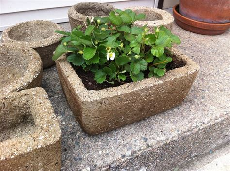Hypertufa Planter by Hypertufa Planter Crafts