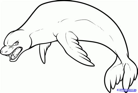 draw a leopard seal step by step drawing sheets added
