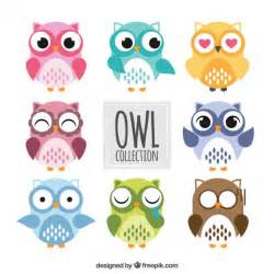 colored owls colored owls collection vector premium