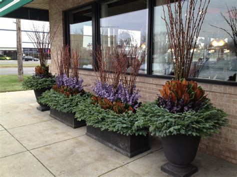 winter container gardens winter container gardening dirt simple