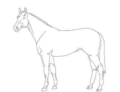 horse outline by natt2004 on deviantart
