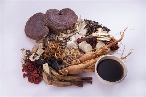 traditional medicine traditional medicines for ipf other lung diseases being
