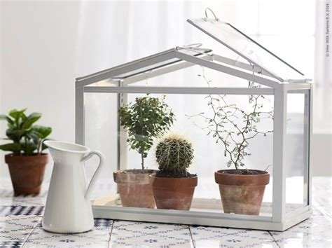 ikea mini greenhouse ikea s mini greenhouse lets you grow your favourite plants
