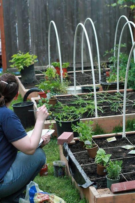 square foot container gardening gardening square foot gardening and gardening tips