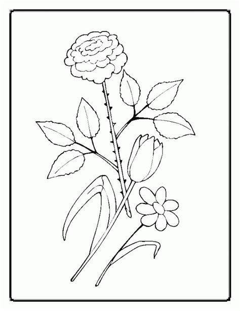 O Keeffe Coloring Pages by O Keeffe Coloring Pages 452201