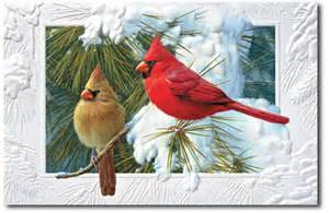 cardinal makes a splendid symbol of christmas season our