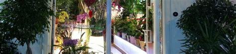 fiori secchi roma fiori secchi a roma negozio di fiori a roma fioridenni