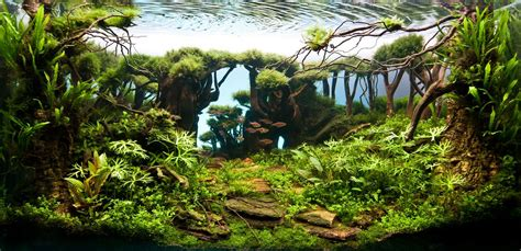 Aquascaping Tips by