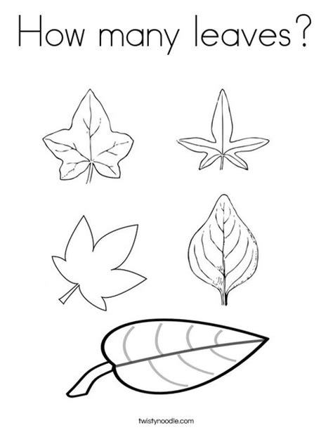 coloring page of small leaves how many leaves coloring page twisty noodle