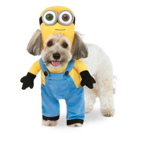 minion costumes for dogs walking minion costume bob baxterboo