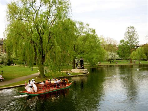 swan boats boston hours hidden boston ma