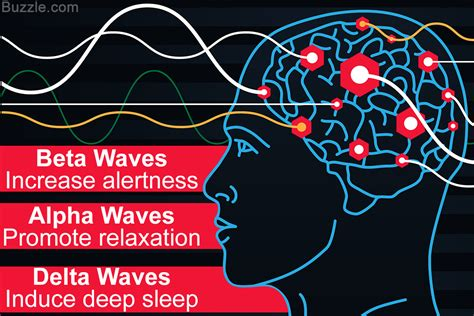 Brain Wave what do you about the types of brain waves and their