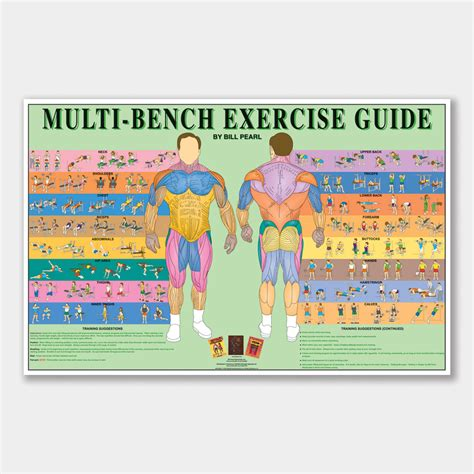 weight bench exercises poster bill pearl 187 pro series exercise posters