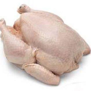 Ayam Potong Fresh Dan Frozen peluang bisnis ayam potong dan analisa usahanya
