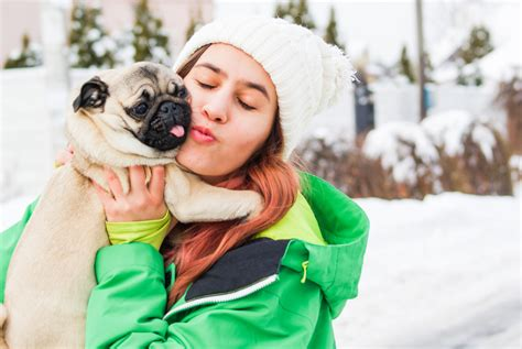 emotional support breeds 11 best emotional support breeds for anxiety insider monkey