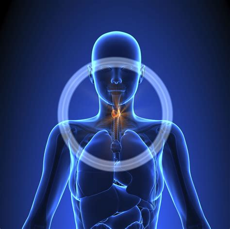 thyroid cancer signs symptoms  complications