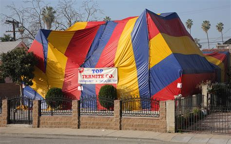 cost to build a house in missouri fumigation wikipedia