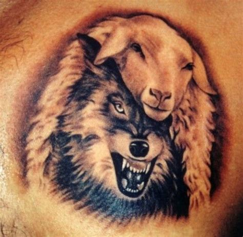 wolf in sheeps clothing tattoo wolf in sheeps clothing would make a sweet
