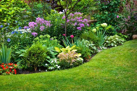 Designing A Shade Garden Plans Design Plus Plant Ideas Plants Ideas For A Garden