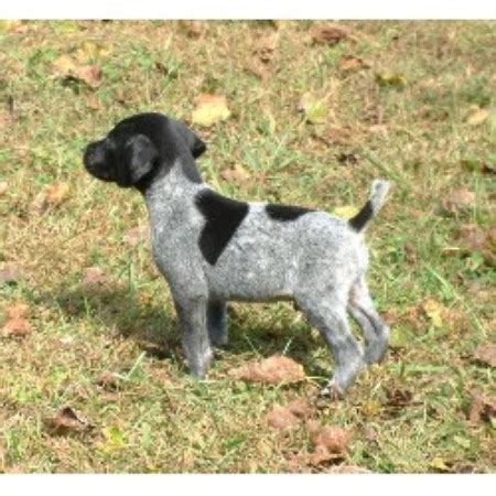german shorthaired pointer puppies rescue shady kennel german shorthaired pointer breeder in hume missouri