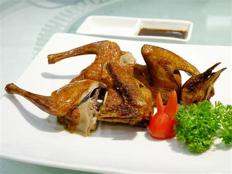 pigeon cuisine free images restaurant dish meal seafood basket