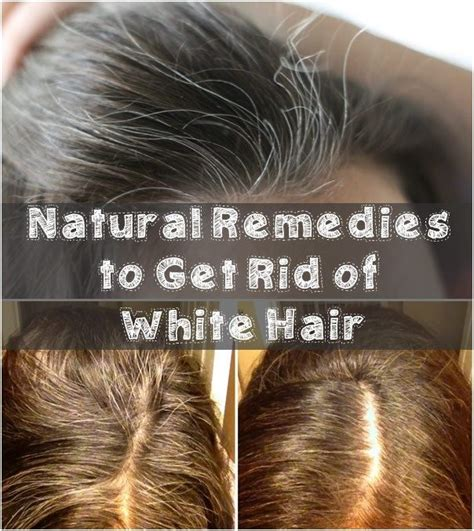 how go get rid of gray on african american hair natural remedies to get rid of white hair gray hair