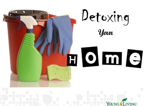 How Do I Detox My by How Do I Detox My Home Customized Therapeutic