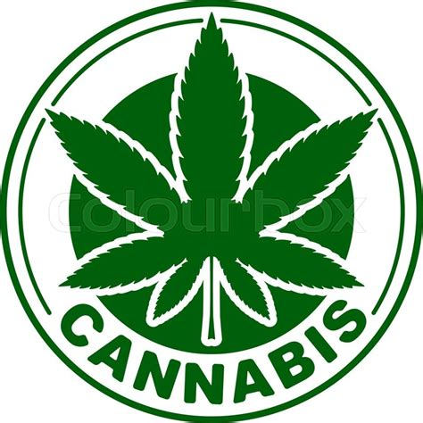 cannabis or marijuana green vector leaf inscribed in a