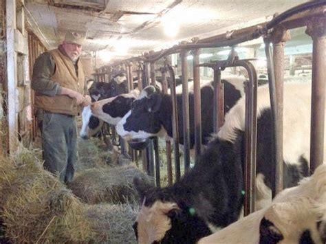 gillibrand pushes ways to preserve small dairy farms