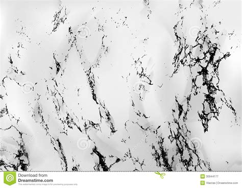 vector marble pattern marble royalty free stock photography image 30944177