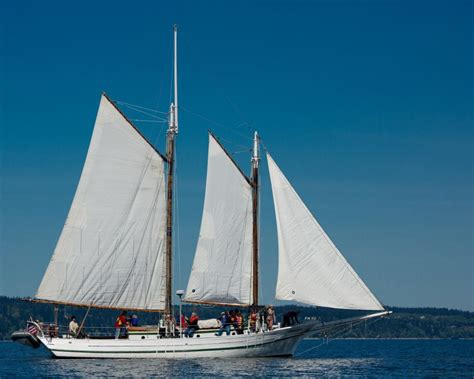 sailing boat union schooner lavengro lake union charters and adventures