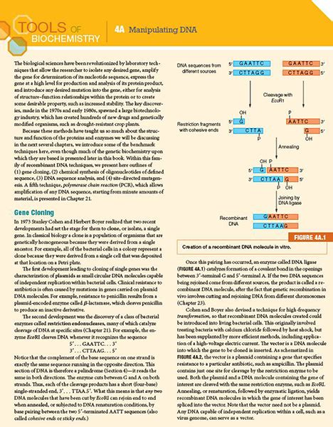 recent research papers in biochemistry recent research papers in biochemistry 28 images